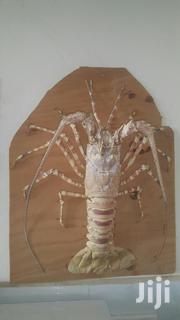 Lobster Shell | Arts & Crafts for sale in Kilifi, Shimo La Tewa