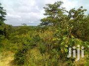 4 Acres At Mbitini.Kitui | Land & Plots For Sale for sale in Kitui, Matinyani