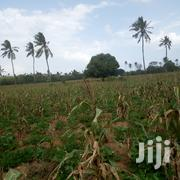 Land for Sale Kilifi Chumani | Land & Plots For Sale for sale in Mombasa, Majengo