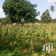 Land for Sale at Kilifi Chumani | Land & Plots For Sale for sale in Mombasa, Majengo