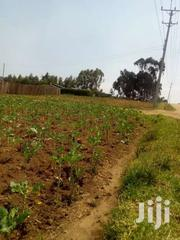 50/100 Plot On Sale At Ihidu Naivasha | Land & Plots For Sale for sale in Nakuru, Biashara (Naivasha)