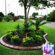 Landscaping Services | Landscaping & Gardening Services for sale in Nairobi, Karen