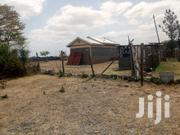 Juja Farm Plots Developed With Ready Title Deeds for Sale at 650k Cash | Land & Plots For Sale for sale in Kiambu, Juja