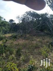 Qouter Acre Located In Gede Watamu | Land & Plots For Sale for sale in Kilifi, Watamu