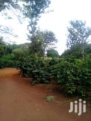 Sagana 12 Acres Torching Tarmac | Land & Plots For Sale for sale in Kiambu, Chania