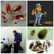 Fumigation Services | Cleaning Services for sale in Nairobi, Parklands/Highridge