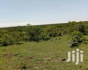 Nanyuki Land for Sale | Land & Plots For Sale for sale in Laikipia, Nanyuki