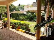 Executive 4br With Sq Town House To Let In Lavington. | Houses & Apartments For Rent for sale in Nairobi, Kilimani