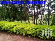 Prime Plots For Sale In A Gated Community For Only 39M | Land & Plots For Sale for sale in Nairobi, Baba Dogo