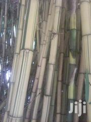 Bamboo Trees | Feeds, Supplements & Seeds for sale in Nyamira, Magwagwa
