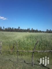 3 Acres For Sale In Memo.Nyandarua County. | Land & Plots For Sale for sale in Nakuru, Biashara (Naivasha)