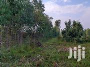 1acre Land On Sale In Ko'gwe,Rongo-homabay Road,3km Off Termac | Land & Plots for Rent for sale in Homa Bay, Homa Bay East