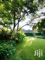 Professional Landscaping Services | Landscaping & Gardening Services for sale in Nairobi, Karen
