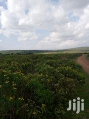 Gilgil Gema Estate ⅛Acre/ ¼Acres Plots | Land & Plots For Sale for sale in Nakuru, Gilgil