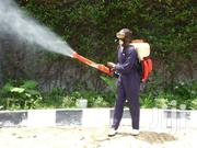 Pest Control Services | Cleaning Services for sale in Nairobi, Kilimani
