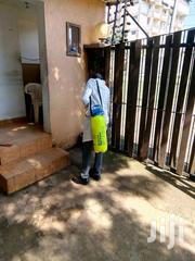 Environmentally Friendly Pest Control And Fumigation Services   Cleaning Services for sale in Nairobi, Dandora Area I
