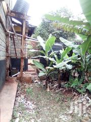Mansion House On A 1/2 An Hector   Land & Plots For Sale for sale in Nairobi, Kasarani