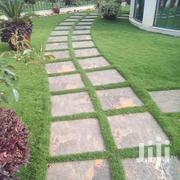 Landscaping | Landscaping & Gardening Services for sale in Nairobi, Kileleshwa
