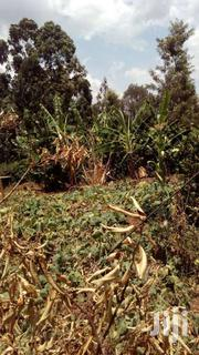 Land Plot | Land & Plots For Sale for sale in Kiambu, Ndenderu