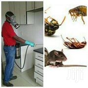 Don't Let Bedbugs  Bite You Anymore - 100% Fumigation Results Nairobi | Cleaning Services for sale in Nairobi, Parklands/Highridge