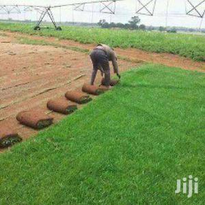 Reliable Lawn & Garden Services In Nairobi.Professional And Affordable