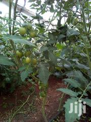 Tomatoes Available In Wholesale And Retail | Meals & Drinks for sale in Nakuru, Nakuru East
