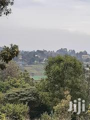 Prime Land Along Kiambu Rd; Mushroom Estate | Land & Plots For Sale for sale in Kiambu, Muchatha
