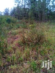 100×100 Plot Available For Lease | Land & Plots for Rent for sale in Nairobi, Uthiru/Ruthimitu