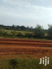 Two Acres In Kabula Bungoma | Land & Plots For Sale for sale in Bungoma, Kabula