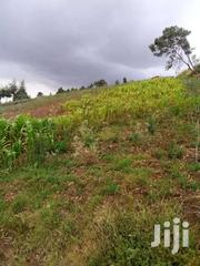 1/4 Acre At Flyover On Sale | Land & Plots For Sale for sale in Nyandarua, Magumu