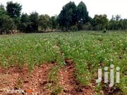 Nyandarua 27 Acres For Sale | Land & Plots For Sale for sale in Nyandarua, Karau