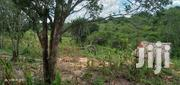 Land For Sale | Land & Plots For Sale for sale in Kwale, Pongwe/Kikoneni