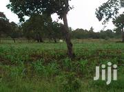 Land At Kwale County On Sale | Land & Plots For Sale for sale in Mombasa, Majengo