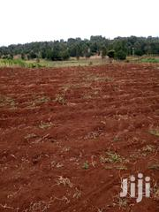 Castle Hill Estate | Land & Plots for Rent for sale in Murang'a, Mbiri