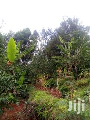 Gatundu -ituru Area, Two And A Half Acres With | Land & Plots For Sale for sale in Kiambu, Kiganjo