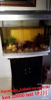 Fish Aquarium | Fish for sale in Mombasa, Majengo