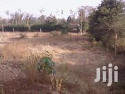 An Acre For Sale | Land & Plots For Sale for sale in Kajiado, Olkeri