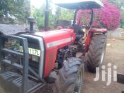 Mf 290 Xtra   Farm Machinery & Equipment for sale in Laikipia, Marmanet