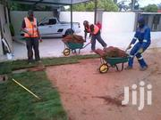 Need Landscaping Service/Lawn Cutting & Pruning/Garden Maintenance? | Landscaping & Gardening Services for sale in Nairobi, Embakasi