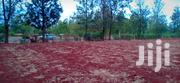 Highway Plots On Quick Sale | Land & Plots For Sale for sale in Embu, Mwea