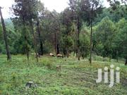 4.25 Acre Land With A Clean Title In Nyeri | Land & Plots For Sale for sale in Nyeri, Gatarakwa