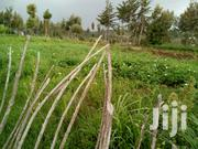 4.25acre Land For Sale | Land & Plots For Sale for sale in Nyeri, Gatarakwa