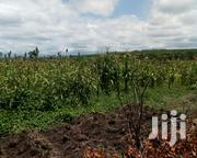 8 Acreas For Sale | Land & Plots For Sale for sale in Laikipia, Nanyuki