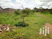 Prime Landless 1/4 Acre Plot | Land & Plots For Sale for sale in Busia, Bunyala West (Budalangi)