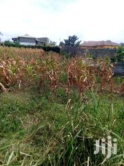 Kwamaiko Quarter Acre With Title | Land & Plots For Sale for sale in Kiambu, Ngewa