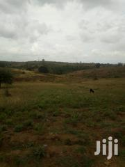 40x80 Pols In Jomvu Mbuyu Wa Chapa For Sale | Land & Plots For Sale for sale in Mombasa, Jomvu Kuu