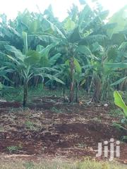 3acres With River Frontage | Land & Plots For Sale for sale in Nyeri, Karima