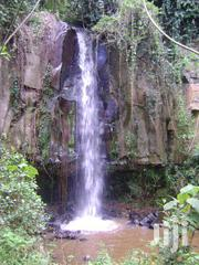 4.25 Acres In Nyeri With A Natural Forest And A Waterfall | Land & Plots For Sale for sale in Nyeri, Mugunda