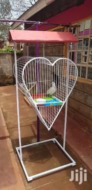 Doves And Cage | Birds for sale in Nairobi, Nairobi Central