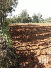 Land For Sale In Rongo. Measuring 0.17ha.Ideal For Residential. | Land & Plots For Sale for sale in Migori, East Kamagambo